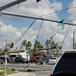 Power Restoration Early On